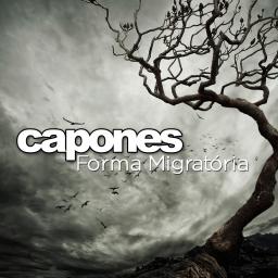 capa-forma-migra